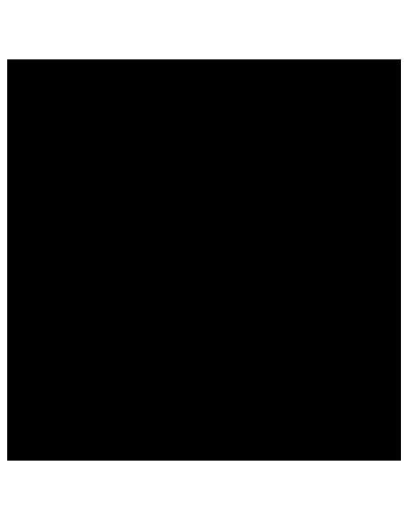 PEGAS Evolution